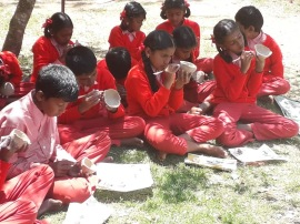 Un stage dans le sud de l'Inde à My School Satya Surabhi                                          e lors de ma visite à My Schlle Satya Surabhi.
